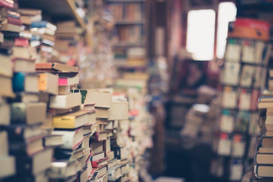 bisnis jual buku